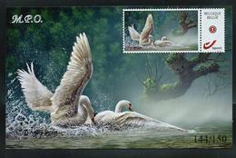 Carte Photo Cygnes  144/150  Avec Duostamp Collé - 1985-.. Oiseaux (Buzin)