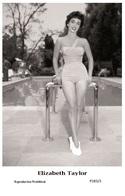 ELIZABETH TAYLOR - Film Star Pin Up PHOTO POSTCARD - P283-3 Swiftsure Postcard - Entertainers