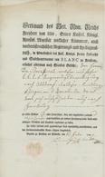 Passeport Konstanz Am Bodensee 1799 Hambourg - Documentos Históricos