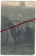 Sysseele Sijsele - Original Foto - 1915 - Deutscher Soldat Auf Pferd - Damme