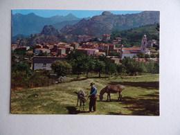 2A PIANA Le Village Animaux Âne - Autres Communes