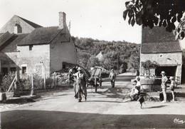 Sardy-les-Forges  58   Le Centre Du Pays Tres Animé-et Attelage De Char A Cheval - France