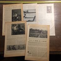 1901 DOCUMENT DANS LE MONDE DES FUMEURS CULTURE TABAC ILE DE JAVA - Vieux Papiers