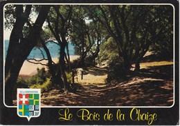 ILE DE NOIRMOUTIER. Noirmoutier-Le Bois De La Chaize - Noirmoutier