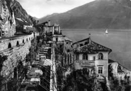 """Limone Lago Di Garda Albergo Ristorante """"La Pergola""""  (10X15 Cm) - Brescia"""