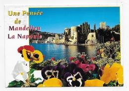 MANDELIEU LA NAPOULE - PENSEES - CPM GF VOYAGEE - France