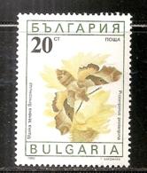 BULGARIE      N°  3326   OBLITERE - Bulgarie