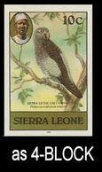 SIERRA LEONE 1980 Birds Parrot 10c Imp.1982 Wmk CA IMPERF.4-BLOCK - Oies