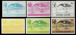 SIERRA LEONE 1980 Birds Goose 5c Imprint 1982 Wmk CA PROGRESSIVE PROOFS:6 Itemes - Oies