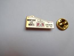 Beau Pin's , Ville De Montigny Les Monts , Centenaire , Aube - Cities