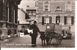 STAVELOT - H VALENTIN Notre Ardennais Avec Attelage De Chien Photo Veritable 1956 Auto Veteran 1064  D2 - Stavelot