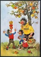 C1987 - TOP Mecki Igel Apfel Apfelernte - DDR - Glückwunschkarte - Mecki