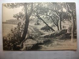 Carte Postale Noirmoutier (85) Bois De La Chaise - La Plage Vue A Travers Bois (Petit Format Noir Et Blanc Non Circulée) - Noirmoutier