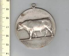 1001 Medaille - Ministere De L Agriculture 1952 - Ministerie Van Landbouw - Belgique - Belgie - Belgium