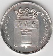 TOURNAI   SUPERBE MÉDAILLE  1895 - Belgium
