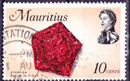 Mauritius - Großplattenseestern (Mi.Nr.: 335) 1969 - Gest. Used Obl. - Maurice (1968-...)