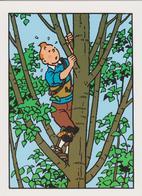 """TINTIN ( Carte 2 Volets ) """" Les Bijoux De La Castafiore  """" - Comics"""