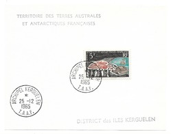 TAAF TIMBRE N° 20 Oblitéré - Terres Australes Et Antarctiques Françaises (TAAF)