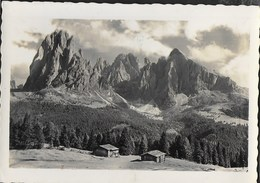 DOLOMITI - GRUPPO SASSOLUNGO - VIAGGIATA 1963 - Alpinisme