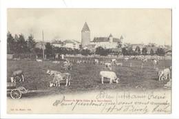 21356 - Autour De Bulle Foire De La Saint-Denis 1904 - FR Fribourg