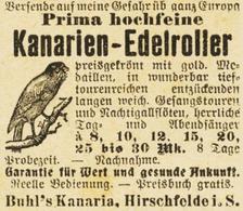 Original-Werbung/ Anzeige 1906 - KANARIEN-EDELROLLER / BUHL'S KANARIA - HIRSCHFELDE - Ca. 45 X 45 Mm - Werbung