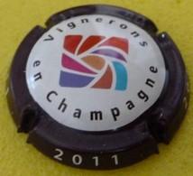 VIGNERONS EN CHAMPAGNE  Millésime 2011 - Autres