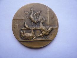 Rare Piece Souvenir POULE DES COURRIERES PRIX OFFERT PAR LEON ROCHE 4x4 Cm 2 Photos - Obj. 'Souvenir De'