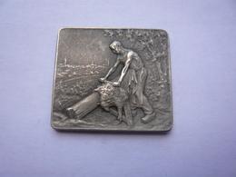 Rare Piece Souvenir NIORT LABEUR EPARGNE 3,5 X 3 Cm 2 Photos - Obj. 'Souvenir De'