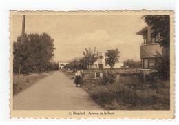 Stokkel 2.Stockel  Avenue De La Forêt 1946  Edit.Vandermaelen - St-Pieters-Woluwe - Woluwe-St-Pierre