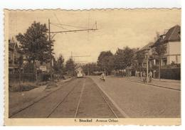 Stokkel 9.Stockel  Avenue Orban 1946  Edit.Vandermaelen - Woluwe-St-Pierre - St-Pieters-Woluwe