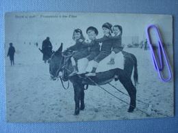 HEIST :  Promenade à Dos D'âne En 1912 - Voir Figure ..... - Heist