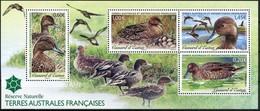 French Antarctic Territory TAAF 2013 Fauna, Birds, Oiseaux Canards - Blocs-feuillets
