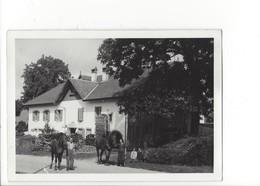 21365 - Carte Photo Les Bayards Neuchâtel Couple Avec Chevaux 1938 (format 10X15) - NE Neuchâtel