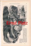 169 Ernst Platz Sommerfrische Brenner Artikel Mit 10 Bildern 1897 !! - Zeitungen & Zeitschriften