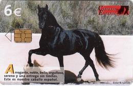SPAIN - Caballo Espanol , Tirage 251000, 04/06, Used - Espagne