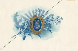 1893-1894 Grande étiquette Boite à Cigare Havane - Etichette