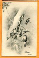 VAL133, Bonne Année, Belle Fantaisie, H. H. I. W. 648, Circulée 1910 - Vogels