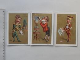 CHROMO BELLE JARDINIERE: BOURGEOIS Humour Lot 3 Différents Même Série - Baron Marquis Rasoir Journal Gant - Lith. APPEL - Altri