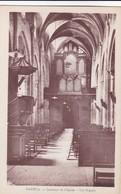 Nantua - Intérieur De L'église - Les Orgues - Nantua