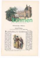 248 Valdena Böhmische Bäder Böhmen Artikel Mit 12 Bildern Von 1897 !! - Historische Dokumente