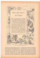 250 Albrecht Dürer Artikel Mit 15 Bildern Von 1886 !! - Historische Dokumente