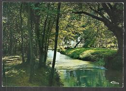 Cpm 2119478 Brazey En Plaine Le Parc Joseph Magnin - Autres Communes
