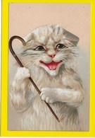 KAT-POES :  CHATS-CAT-KATZE - Illustrateurs & Photographes
