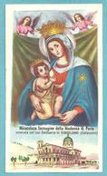MADONNA DI PORTO - Gimigliano (CZ) - E - PR - Mm. 57 X 102 - Edizioni EB - Religion & Esotericism