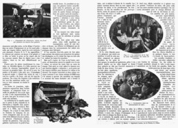 CORDONNIERS-SABOTIERS Et  BOTTIERS MILITAIRES  1916 - 1914-18