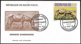 1972 - HAUTE-VOLTA - FDC - Y&T 279 [Equus Africanus Asinus] + OUAGADOUGOU - Alto Volta (1958-1984)