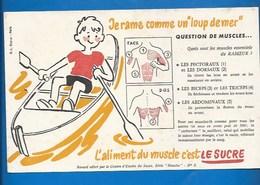 BUVARD - ENFANTS - SANTÉ - JE RAME...MES MUSCLES DE RAMEUR... - Bambini