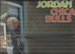 MICHAEL JORDAN......PALLACANESTRO....VOLLEY BALL...BASKET - Tarjetas