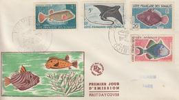 Enveloppe  FDC  1er  Jour   COTE  FRANCAISE  DES  SOMALIS   Poissons   1959 - Côte Française Des Somalis (1894-1967)