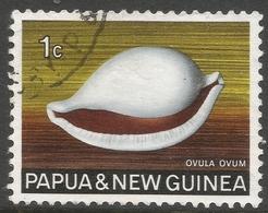 Papua New Guinea. 1968-69 Sea Shells. 1c Used. SG 137 - Papouasie-Nouvelle-Guinée
